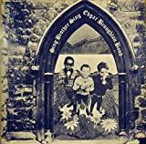 Sing Brother Sing [Vinyl]